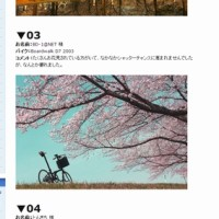 【2003 DAHON BOARDWALK】SAKURA×DAHON PHOTO CONTEST 2014 SPRING【祝入賞(^○^)】