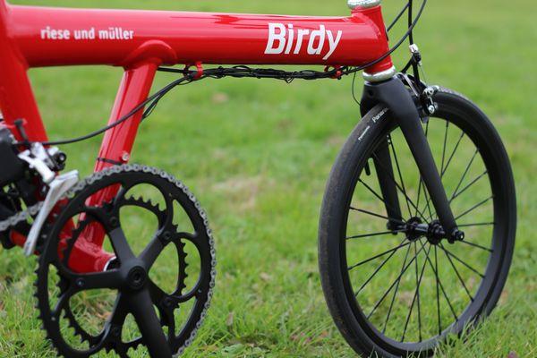 bd1-birdy-18inch-carbon-fork-inchdown-10